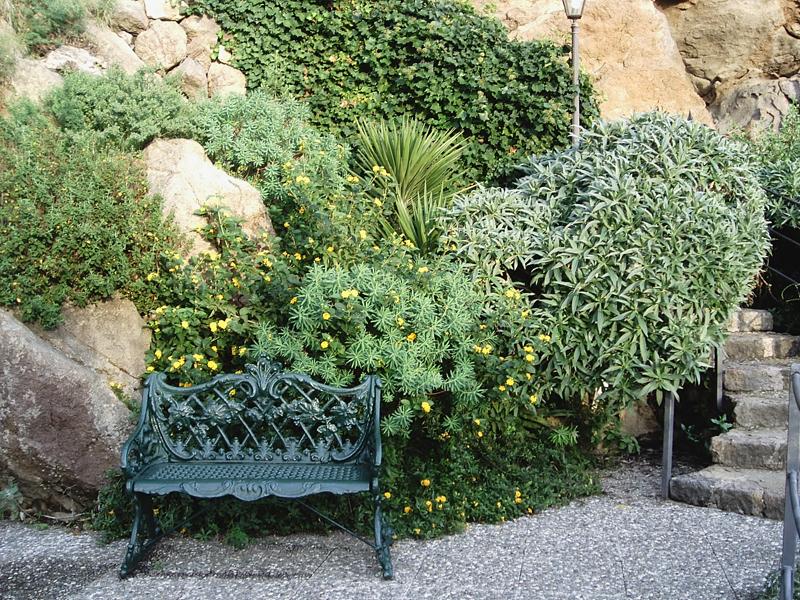Storia del giardino roccioso giardinaggio irregolare for Cespugli giardino