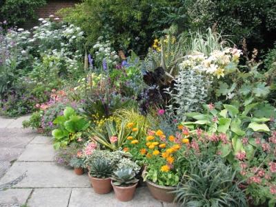 29 agosto 2004 progettare un aiuola parte ii - Piccole aiuole da giardino ...