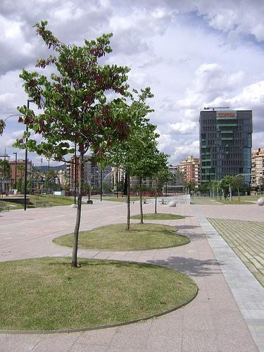Alberature Stradali Giardinaggio Irregolare