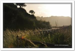 """Invio le tre foto richieste per partecipare al concorso """"autunno nelle regioni mediterranee"""". Di  Luce d'autunno invio anche il link della foto su Flickr > http://www.flickr.com/photos/45997315@N03/5161361015/in/photostream  grazia zitara"""