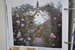 052arredare country, ultimo tocco, luci in giardino