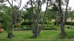 03_LL-FBSR_Skrudur_orto e alberi