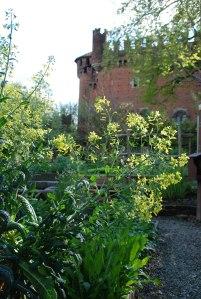 BM giardino 1