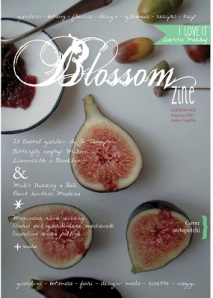 cover second issue