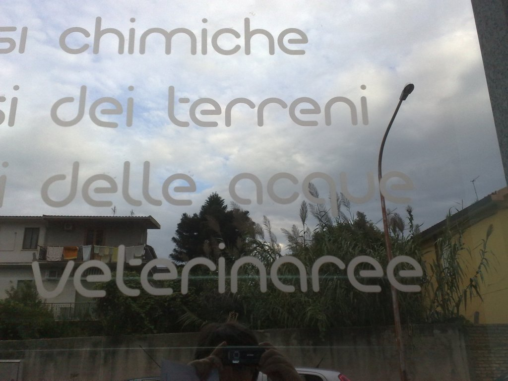 analisi veterinaree