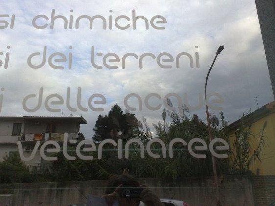 analisi veterinaree