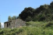Agnana (1)