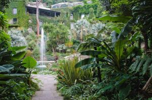 http://www.lamortella.org/giardino/giardini-a-valle/fontana-principale-e-fontana-alta