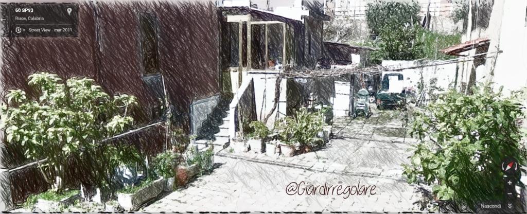 giardino povero_a