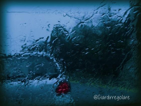 automobile pioggia_bassa