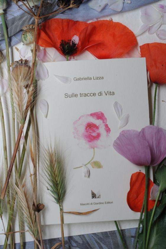 gabriella_lizza_sulle tracce di vita2