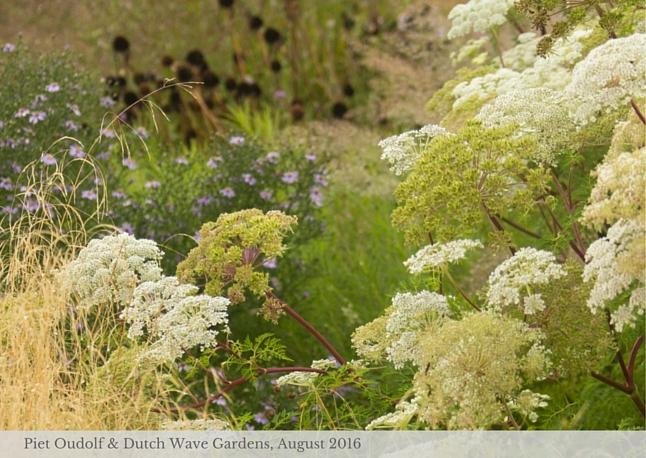 piet-oudolf-garden-tour-web-1