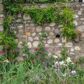 9-un-angolo-del-giardino_a