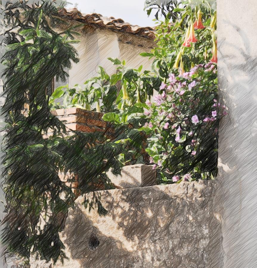 Giardinaggio irregolare chi scrive di giardini deve for Costo di avere una casa costruita